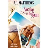 Awake In The Sun