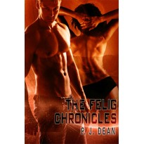 The Felig Chronicles