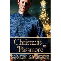 Christmas in Passmore