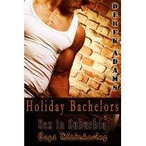 Holiday Bachelors