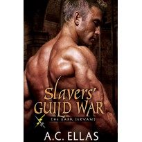 Slavers' Guild War