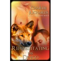 Rehabilitating his Dingo