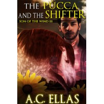 The Pucca and the Shifter