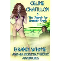 The Search for Brandi's Crack