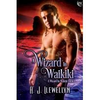 A Wizard in Waikiki