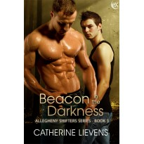 Beacon in the Darkness