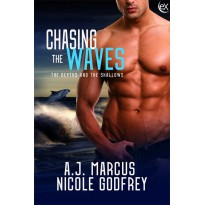 Chasing the Waves