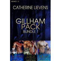 Gillham Pack Bundle 1