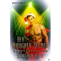 Her Naughty Secret