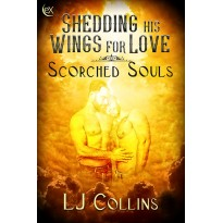Shedding His Wings For Love