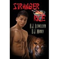 Stranger Rice