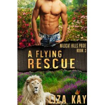 A Flying Rescue